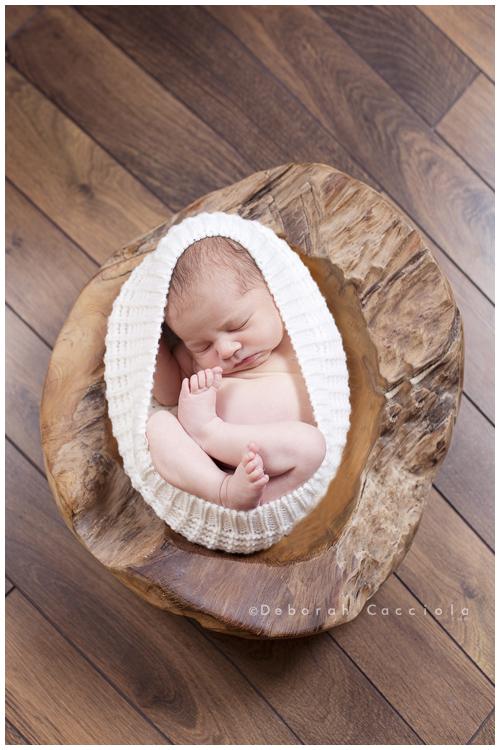 Photo Nouveau né Photo De Bébé Dans Une Coquille Cocon