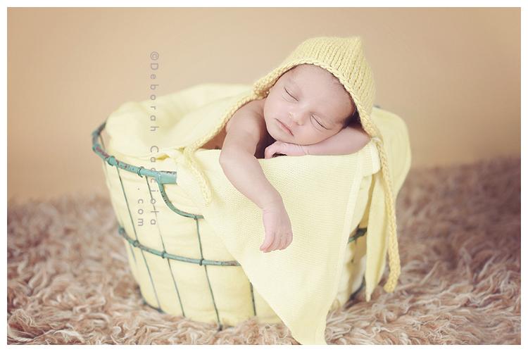 Photo Nouveau né Photo De Bébé Dans Une Corbeille à Linge