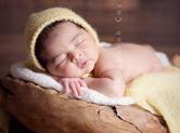 Photo nouveau-ne Photographie de bébé dans sa coquille